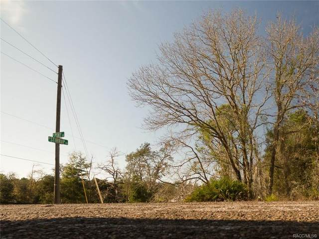 3475 N Stirrup Drive, Beverly Hills, FL 34465 (MLS #789941) :: Plantation Realty Inc.