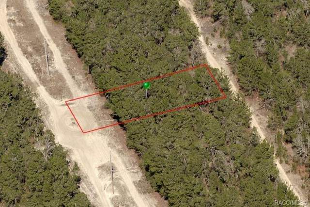 111 Webhill Avenue, Inverness, FL 34452 (MLS #789974) :: Plantation Realty Inc.