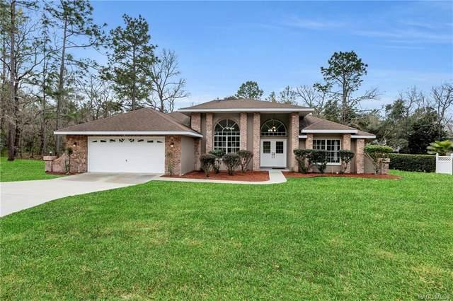 4 Gourds Court E, Homosassa, FL 34446 (MLS #789978) :: Plantation Realty Inc.