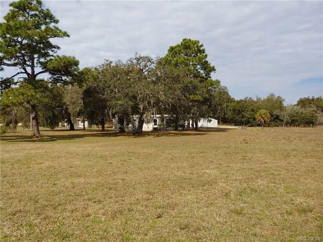 6805 W Holiday Street, Homosassa, FL 34446 (MLS #790001) :: Plantation Realty Inc.