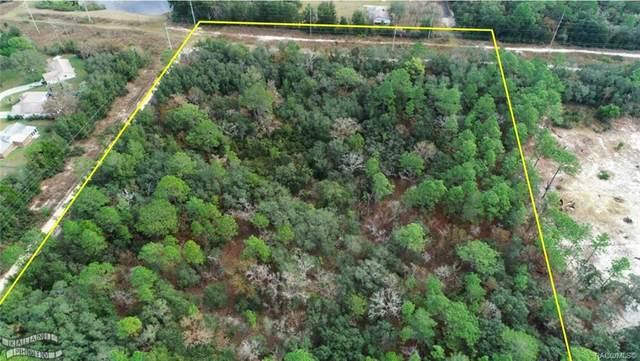 4995 W Old Citrus Road, Lecanto, FL 34461 (MLS #790015) :: Plantation Realty Inc.