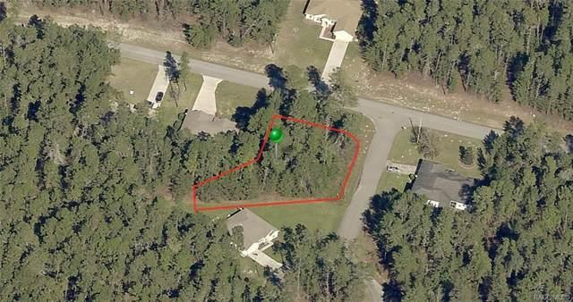 47 Village Center Drive, Homosassa, FL 34448 (MLS #790034) :: Plantation Realty Inc.