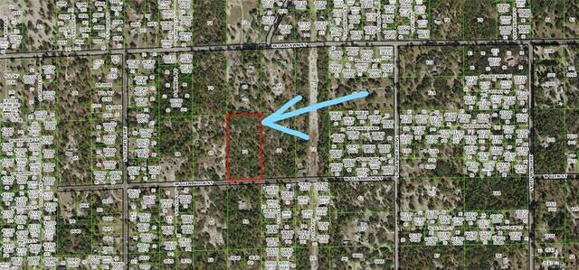 5167 W Glenbrook Street, Homosassa, FL 34446 (MLS #790066) :: Plantation Realty Inc.