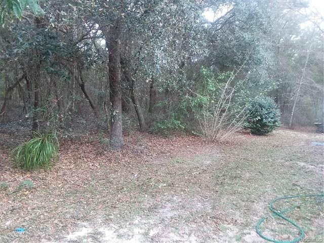 875 W Deacon Place, Citrus Springs, FL 34434 (MLS #790072) :: Plantation Realty Inc.