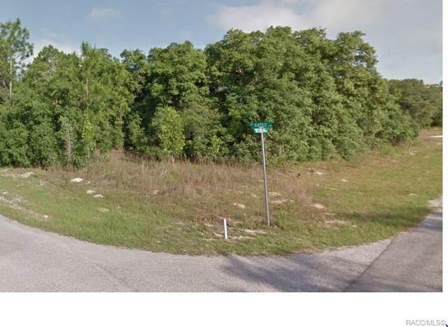 3261 W Gates Lane, Citrus Springs, FL 34433 (MLS #790118) :: Plantation Realty Inc.