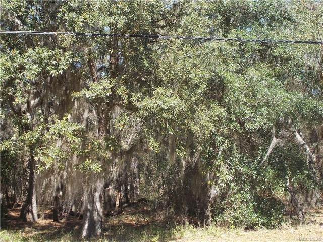 669 W Pearson Street, Hernando, FL 34442 (MLS #790120) :: Plantation Realty Inc.