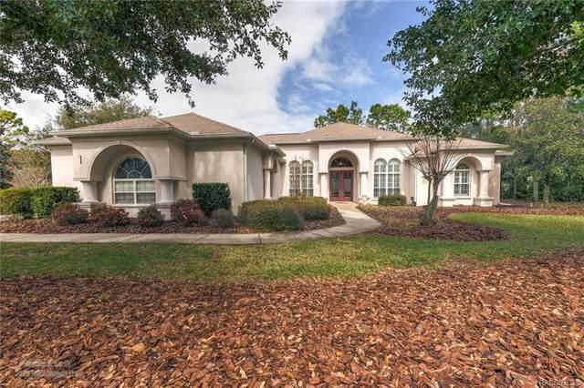 1 Deer Court, Homosassa, FL 34446 (MLS #790159) :: Plantation Realty Inc.
