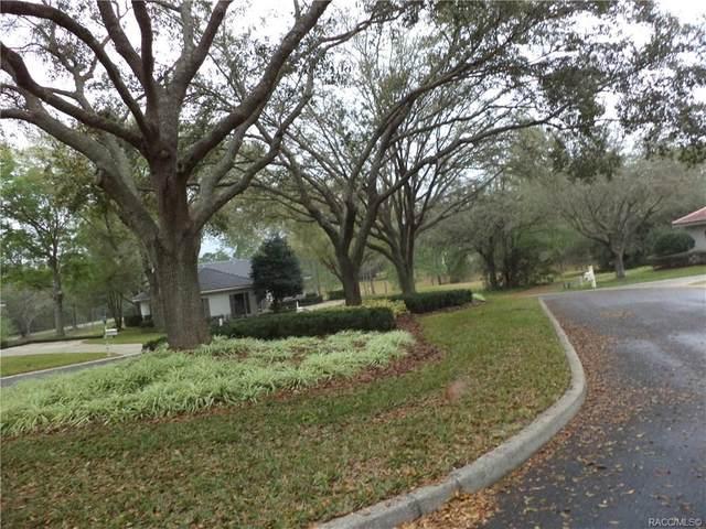 3700 W Treyburn Path, Lecanto, FL 34461 (MLS #790251) :: Plantation Realty Inc.