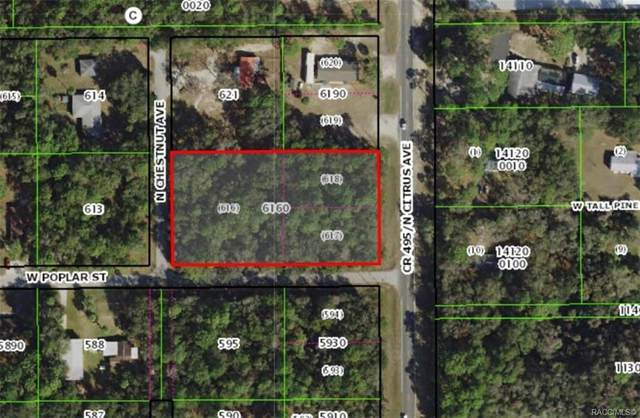 9567 W Poplar Street, Crystal River, FL 34428 (MLS #790314) :: Plantation Realty Inc.