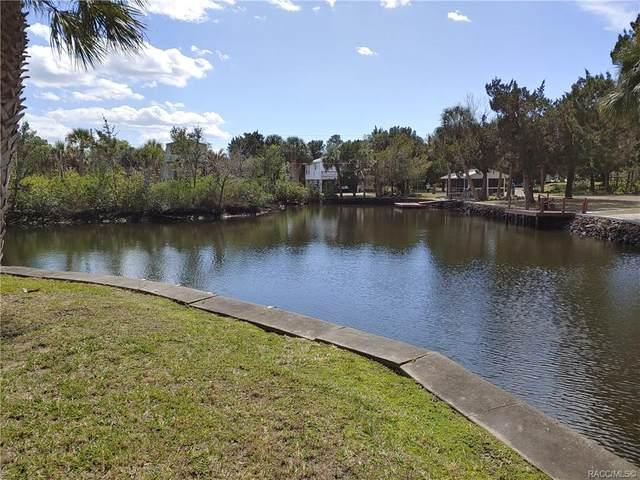 12106 W Waterwood Drive, Crystal River, FL 34429 (MLS #790529) :: Plantation Realty Inc.