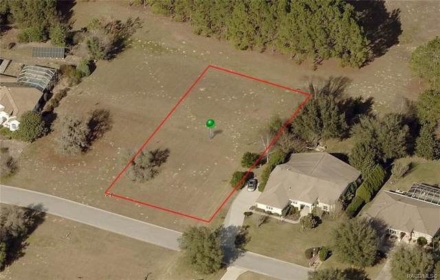 1505 E Seattle Slew Circle, Inverness, FL 34453 (MLS #790653) :: Plantation Realty Inc.