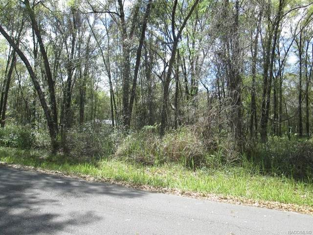 562 N Savary Avenue, Inverness, FL 34450 (MLS #790679) :: Plantation Realty Inc.