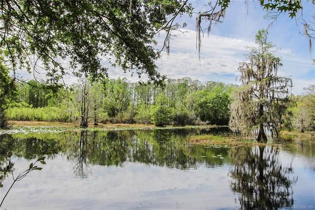 9222 E Hampton Point Road, Inverness, FL 34450 (MLS #790700) :: Plantation Realty Inc.