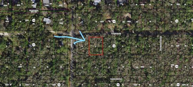 10221 W Oliver Street, Homosassa, FL 34448 (MLS #790815) :: Plantation Realty Inc.
