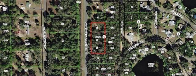5075 N Carl G. Rose Highway, Hernando, FL 34442 (MLS #790989) :: Plantation Realty Inc.