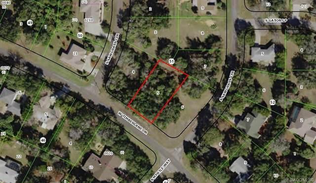 11631 W Timberlane Drive, Homosassa, FL 34448 (MLS #791123) :: Plantation Realty Inc.