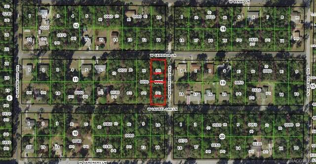 9682 W Camphor Lane, Crystal River, FL 34428 (MLS #791148) :: Plantation Realty Inc.