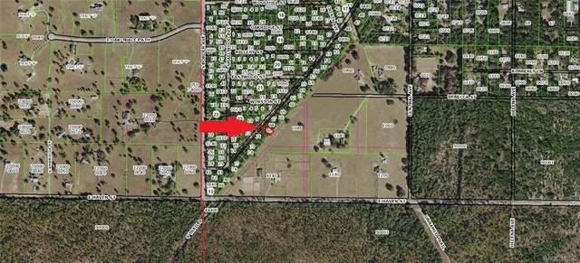 311 S Crestview Avenue, Inverness, FL 34452 (MLS #791167) :: Plantation Realty Inc.