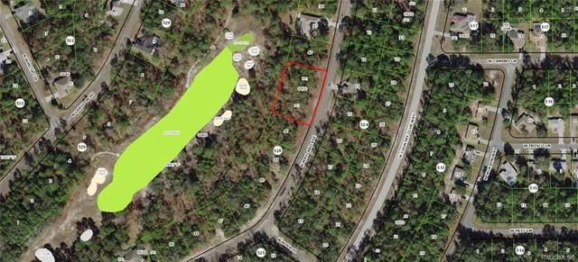 9622 N Wayland Avenue, Citrus Springs, FL 34434 (MLS #791169) :: Pristine Properties