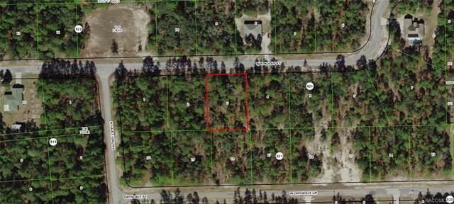 3956 W Findlay Street, Citrus Springs, FL 34433 (MLS #791201) :: Pristine Properties