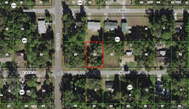 6329 E Slate Street, Inverness, FL 34452 (MLS #791217) :: Plantation Realty Inc.