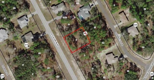 8291 N Elkcam Boulevard, Citrus Springs, FL 34433 (MLS #791219) :: Plantation Realty Inc.