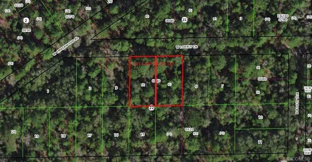 7278 W Lovely Lane, Dunnellon, FL 34433 (MLS #791224) :: Plantation Realty Inc.