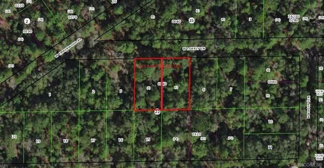7266 W Lovely Lane, Dunnellon, FL 34433 (MLS #791225) :: Plantation Realty Inc.