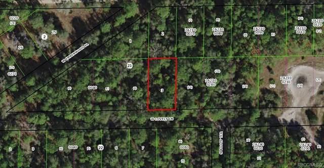 7278 W Lovely Lane, Dunnellon, FL 34433 (MLS #791226) :: Plantation Realty Inc.
