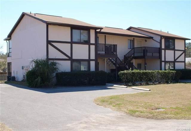 2330 W Silver Hill Lane, Lecanto, FL 34461 (MLS #791236) :: Pristine Properties