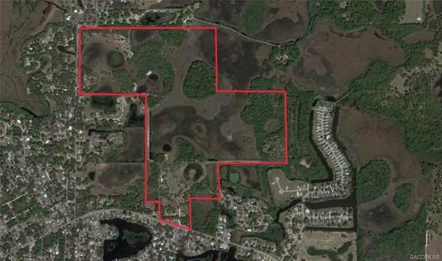 9209 E Gospel Island Road S, Inverness, FL 34450 (MLS #791237) :: Plantation Realty Inc.