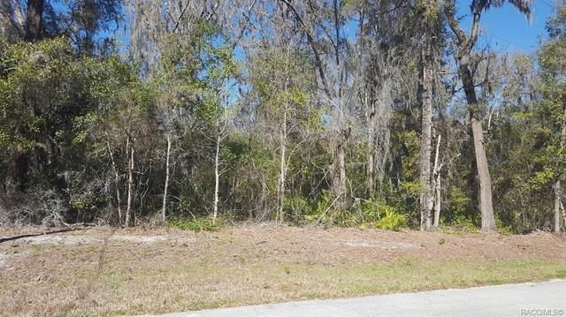 6733 N Hartman Path, Hernando, FL 34442 (MLS #791309) :: Plantation Realty Inc.