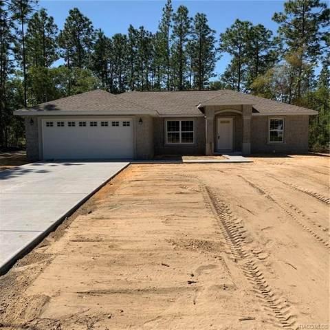 3372 W Webster Place, Citrus Springs, FL 34434 (MLS #791323) :: Plantation Realty Inc.
