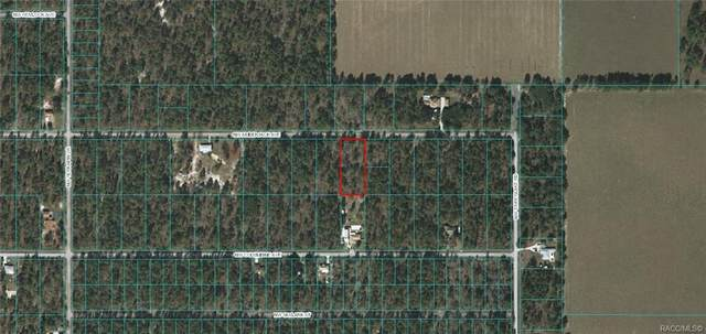 Lot 12 NW Amberjack Avenue, Dunnellon, FL 34431 (MLS #791329) :: Plantation Realty Inc.