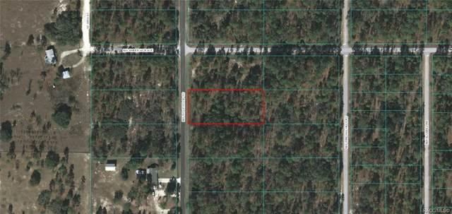 Lot 31 NW Ridgewood Avenue, Dunnellon, FL 34431 (MLS #791330) :: Plantation Realty Inc.