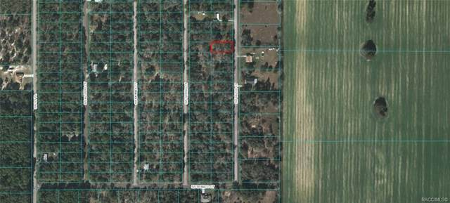 Lot 14 SW Yazoo Court, Dunnellon, FL 34431 (MLS #791334) :: Plantation Realty Inc.