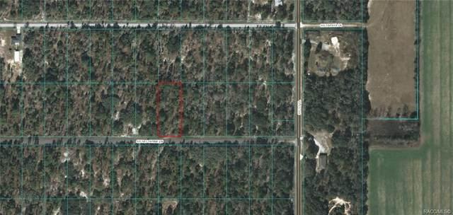 Lot 43 SW Nectarine Lane, Dunnellon, FL 34431 (MLS #791337) :: Plantation Realty Inc.