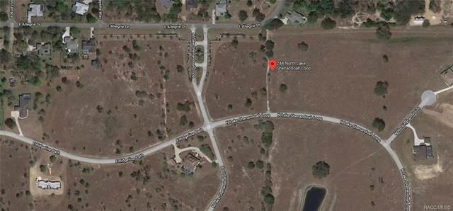 244 N Lake Shenandoah Loop, Inverness, FL 34453 (MLS #791359) :: Plantation Realty Inc.