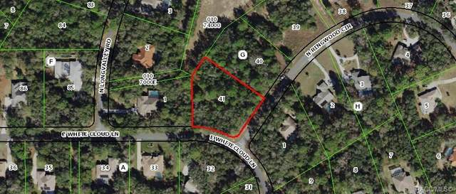 4125 N Ringwood Circle, Hernando, FL 34442 (MLS #791461) :: Plantation Realty Inc.