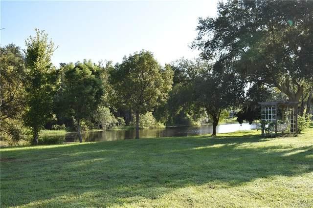 9681 E White Egret Path, Inverness, FL 34450 (MLS #791479) :: Plantation Realty Inc.