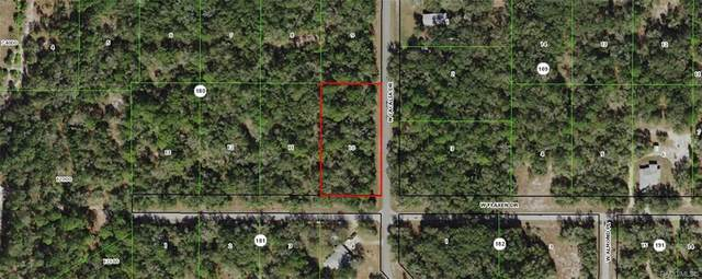 9724 N Cacalia Drive, Crystal River, FL 34428 (MLS #791497) :: Plantation Realty Inc.