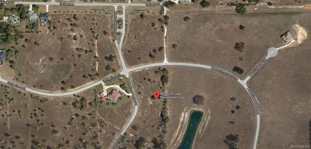 645 N Lake Shenandoah Loop, Inverness, FL 34453 (MLS #791582) :: Plantation Realty Inc.