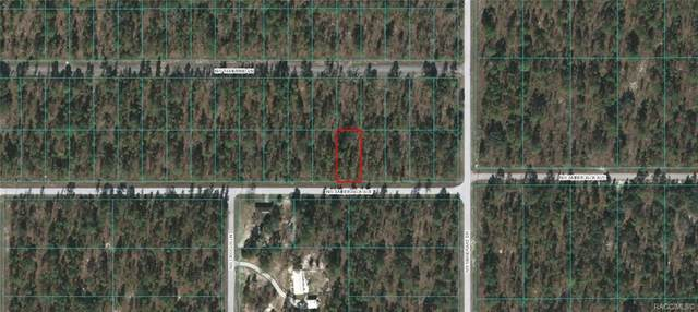 Lot 38 NW Amberjack Avenue, Dunnellon, FL 34431 (MLS #791721) :: Plantation Realty Inc.