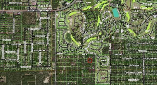 1154 N Munich Terrace, Lecanto, FL 34461 (MLS #791728) :: Plantation Realty Inc.