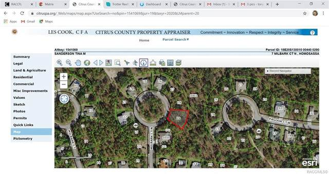 7 Milbark Court N, Homosassa, FL 34446 (MLS #791753) :: Plantation Realty Inc.