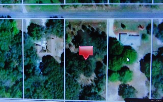 224 W National Street, Hernando, FL 34442 (MLS #791765) :: Plantation Realty Inc.