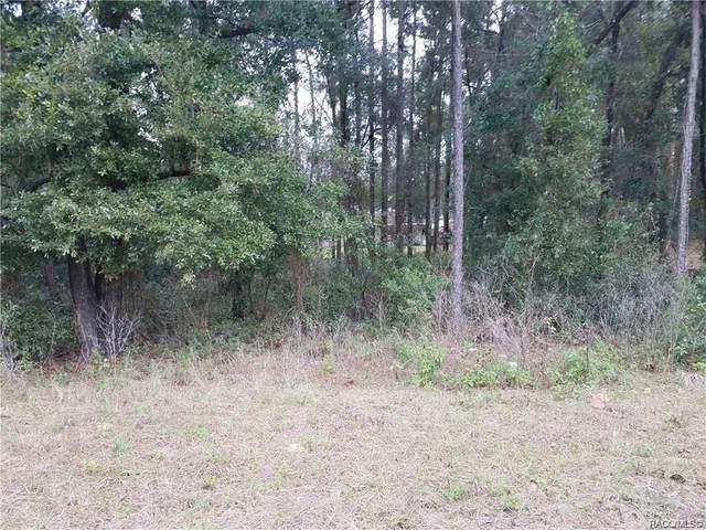 3677 & 3691 S Ventura Avenue, Inverness, FL 34450 (MLS #791768) :: Plantation Realty Inc.
