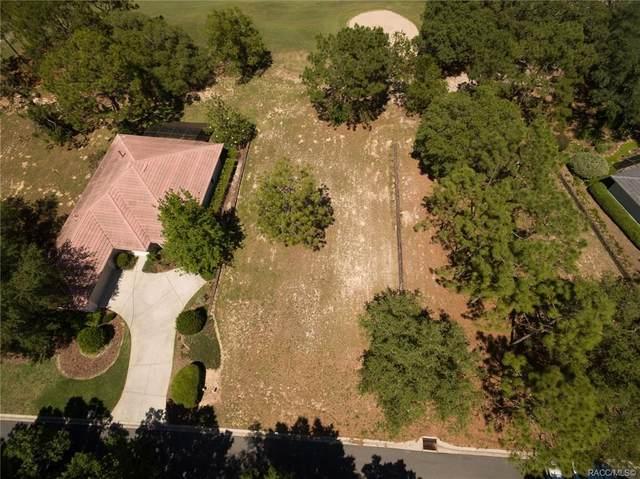 3641 W Treyburn Path, Lecanto, FL 34461 (MLS #791840) :: Plantation Realty Inc.