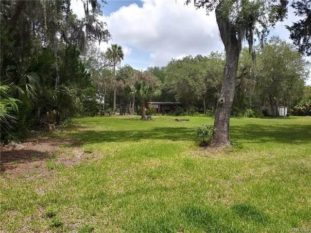 14393 W Shorecliff Court, Crystal River, FL 34429 (MLS #791938) :: Plantation Realty Inc.
