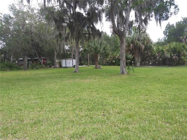 14389 W Shorecliff Court, Crystal River, FL 34429 (MLS #791940) :: Plantation Realty Inc.